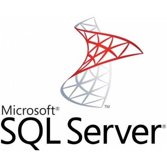 SW MS SQL Server Standard 2019 RUNTIME (server, licence k Money S4/S5)