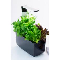 TREGREN T6 Kitchen Garden, chytrý květináč, černý