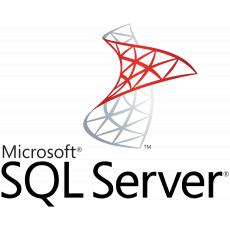 SW MS SQL Server Standard 2019 RUNTIME (klient, licence k Money S4/S5)