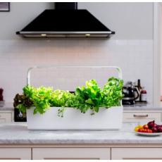 TREGREN T12 Kitchen Garden, chytrý květináč, bílý